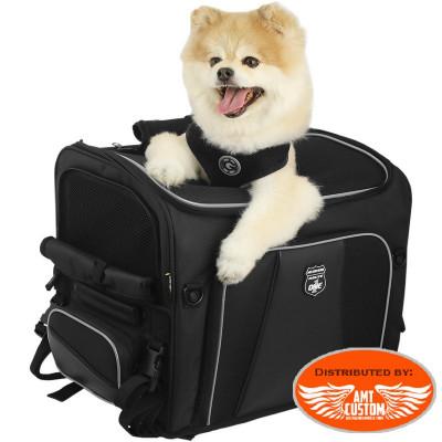 Sissy bar motorcycle and dog transport bag