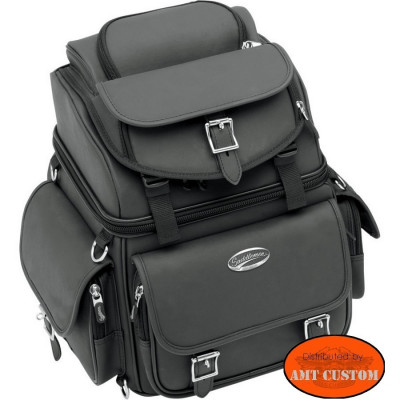 Combination backrest, seat and sissy bar bag motorcycle Harley