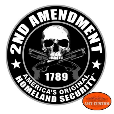 skull 2nd amendment biker helmet sticker