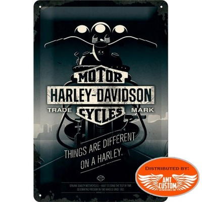 Decorative plate moto custom Harley Davidson